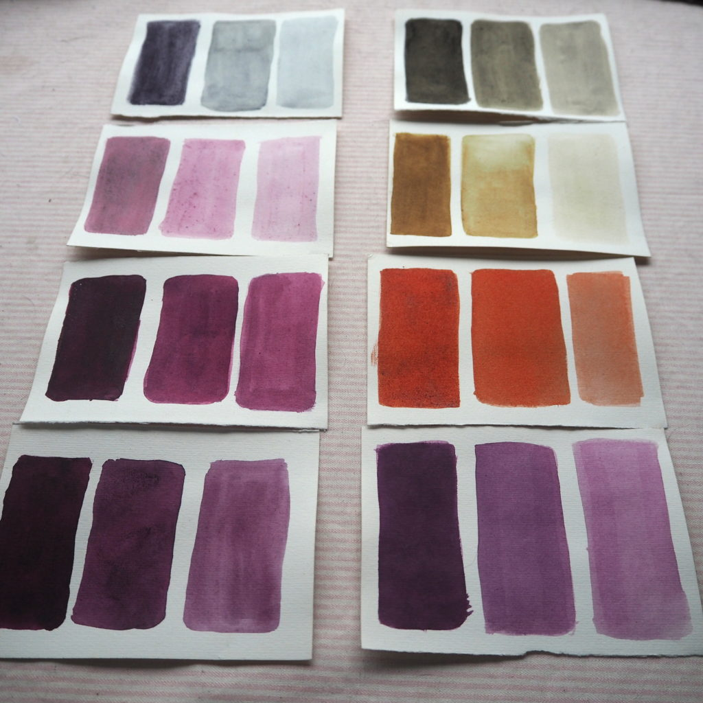Muestras sobre papel de algodón de tinte cochinilla, distintos mordientes y modificadores:   Alumbre, ácido cítrico, cremor tártaro, bicarbonato, sulfato hierro, entre otros.