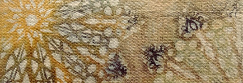 Katazome con pinturas de cebolla, granada, mate, liquen y chestnut bark.