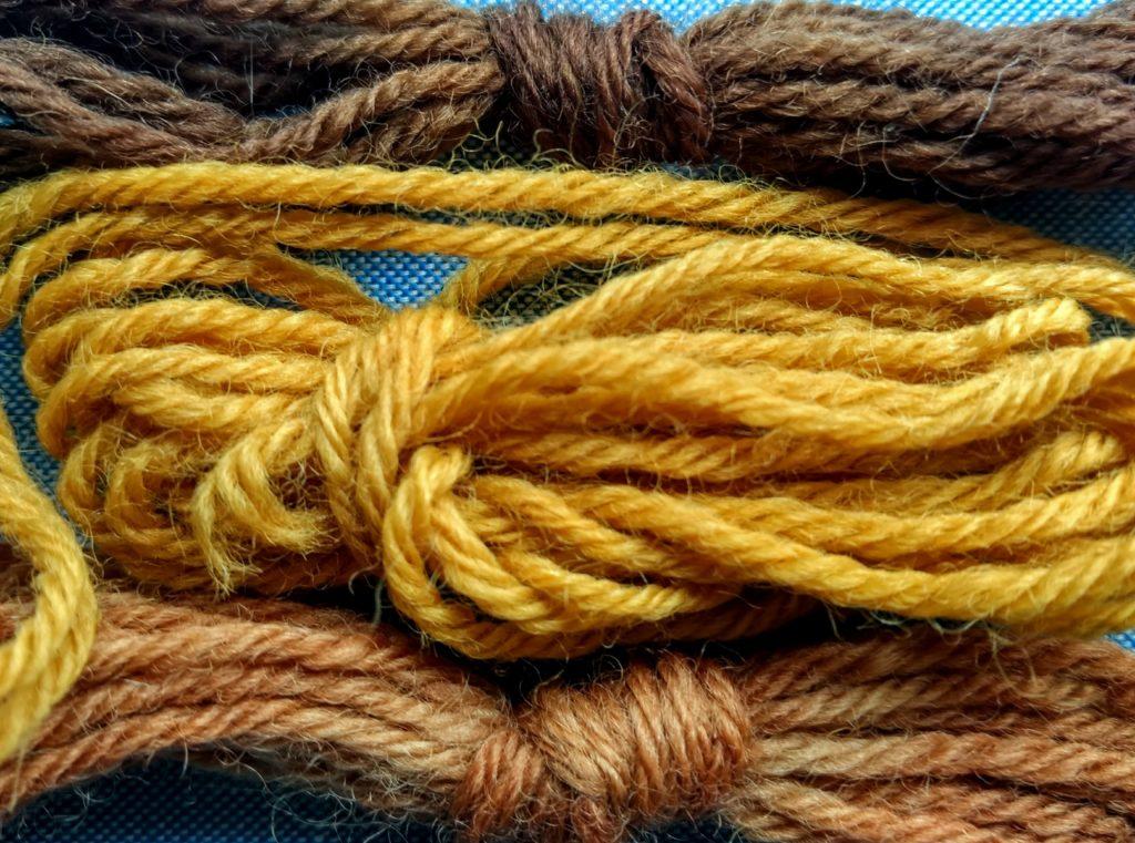 Muestras de teñido con CEBOLLA  sobre lana