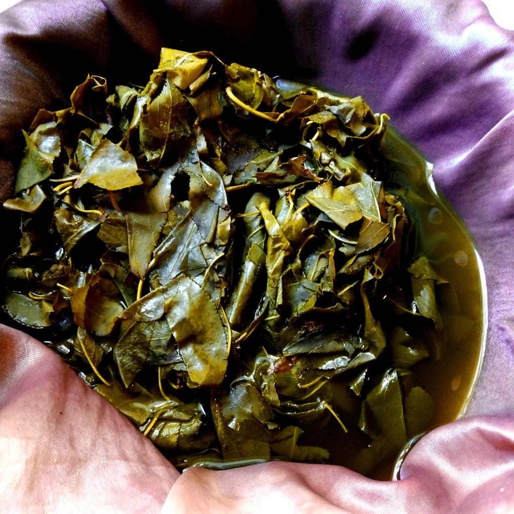 Colando tinte de hojas de ciruelo
