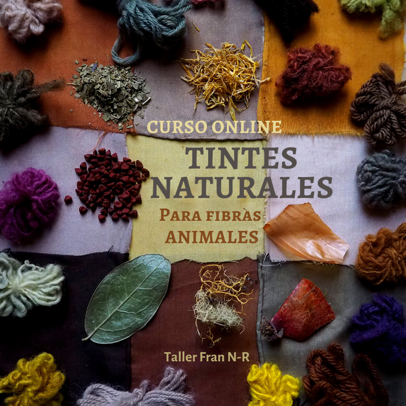 Curso online Tintes naturales para fibras animales